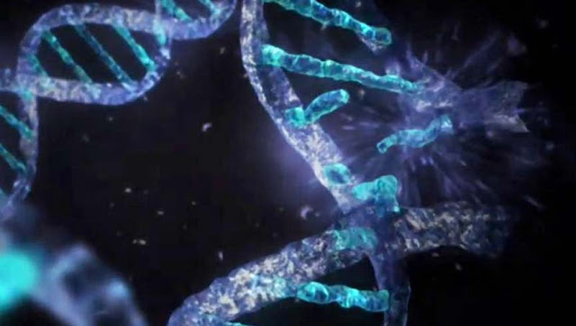 Αυτά που μας Κρύβουν για το Ανθρώπινο DNA