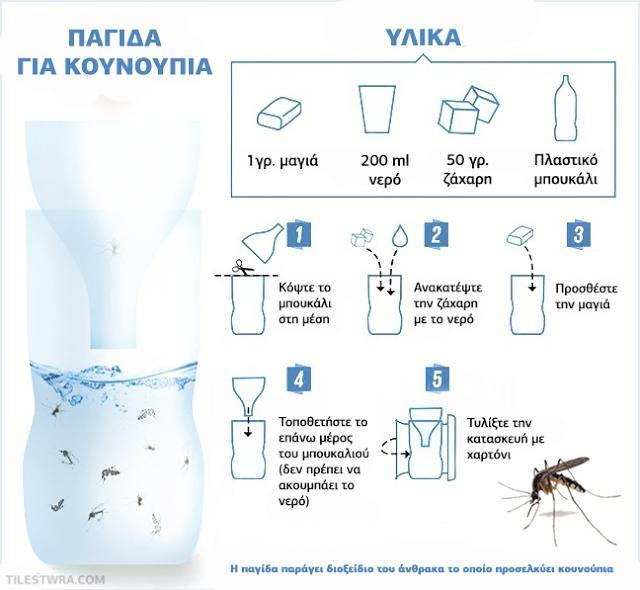 10 Έξυπνα Κόλπα να Καταπολεμήσετε Κουνούπια με Φυσικό Τρόπο