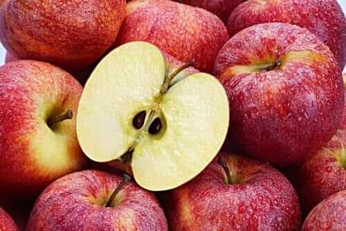 Οι 4 ισχυρότεροι αντικαρκινικοί σπόροι