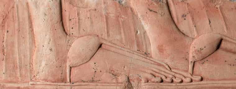«Ελληνικό πόδι» - Η ιδιομορφία στα δάχτυλα που έγινε αισθητικό πρότυπο (εικόνες)