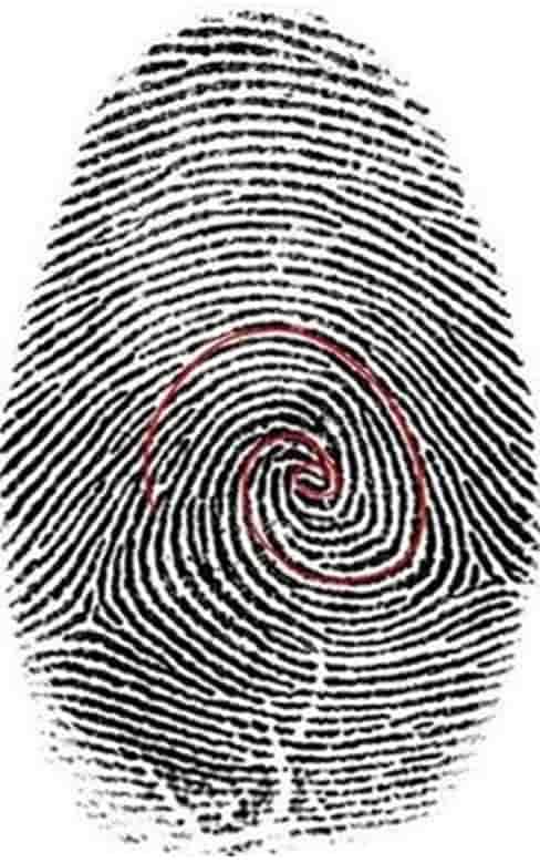 Το γράμμα Ν και ο «Τροχό του Ομήρου»