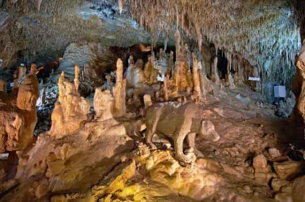 Το Σπήλαιο Πετραλώνων και ο Αρχάνθρωπος των 700.000 ετών (φωτό & video)