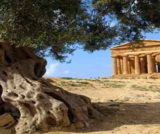 Magna Grecia: Ο Ελληνισμός παραμένει ζωντανός στη νότια Ιταλία [Βίντεο]