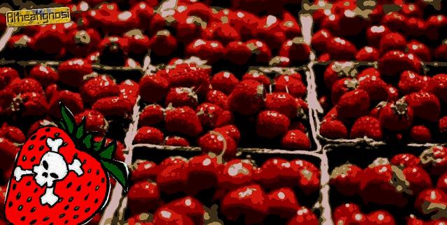 Φράουλα: Το Δηλητήριο που Καταναλώνουμε με την Θέλησή μας, αλλά εν Αγνοία μας
