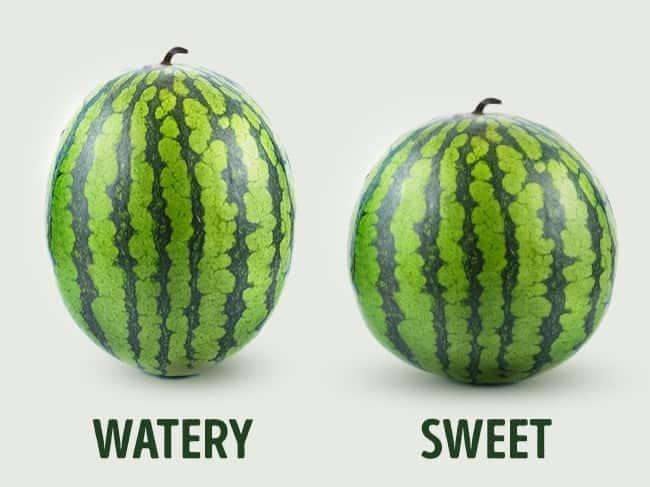 5 Έξυπνα Κόλπα για να Διαλέγουμε Πάντα το Τέλειο Καρπούζι. Ένας αγρότης μας αποκαλύπτει: