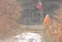 ΚΟΡΙΤΣΑΚΙ που ΑΙΩΡΕΙΤΑΙ σε ΔΑΣΟΣ στην ΡΩΣΙΑ (video)
