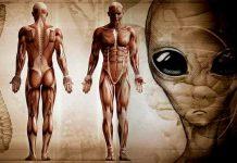 SRGAP2: Το Γονίδιο που Επενέβησαν οι Εξωγήινοι στους Προγόνους μας;