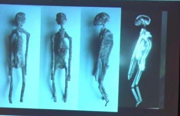 Κι αν υπάρχουν; Μεξικανός Ειδικός Υποστηρίζει ότι Βρέθηκαν Μούμιες… Ερπετοειδών στο Περού (video)