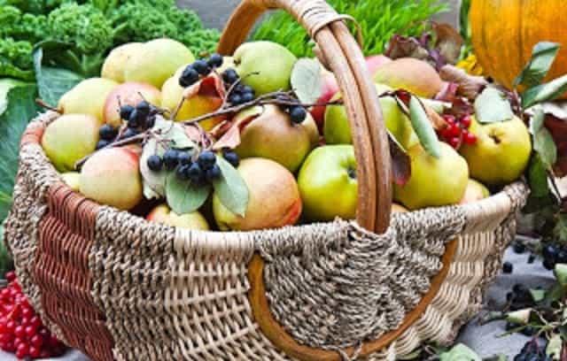 5 Φθινοπωρινές Τροφές που Βοηθούν το Μεταβολισμό και Ενισχύουν την Απώλεια Βάρους!!!