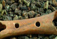 Βρήκαν Αυτό το 43.000 ετών Κόκαλο και Κατάλαβαν ότι οι Ιστορικοί μας Κρύβουν την Αλήθεια