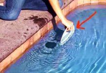 Βουτάει ένα πιάτο μέσα στο νερό και το σέρνει σιγά-σιγά. Ξαφνικά ένα περίεργο φαινόμενο ξεκινά…