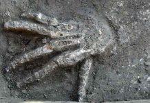 Μεγάλου μεγέθους δεξιά χέρια 3600 χρονών στην Αίγυπτο