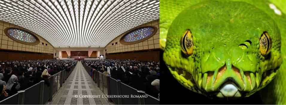 Το Σκοτεινό Μυστικό στην Αίθουσα Ακροατηρίων του Πάπα στο Βατικανό !!! (εικόνες)