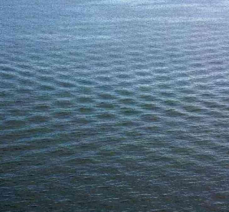 Κοιτούσε τη Θάλασσα από Ψηλά όταν Είδε αυτά τα Περίεργα Τετράγωνα. Όταν Πλησίασε Δεν Πίστευε στα Μάτια του.