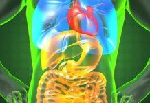 Καρκίνος στην χολή: Προσοχή στα πιο απλά συμπτώματα. Είναι «ύπουλος» καρκίνος
