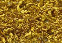 Ποιοί και Γιατί Έφτιαξαν Αυτές τις Χρυσές Σπείρες που Βρέθηκαν στην Δανία; (εικόνες)
