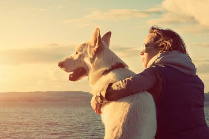 Οι Σκύλοι Συγχρονίζουν τους Χτύπους της Καρδιάς τους με τη Δική μας!!! (video)