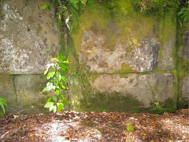 Βρέθηκε Τείχος 330.000 χρονών! ΓΙΑΤΙ ΤΟ ΚΡΥΒΟΥΝ; Ποιοί το Έχτισαν; (video)