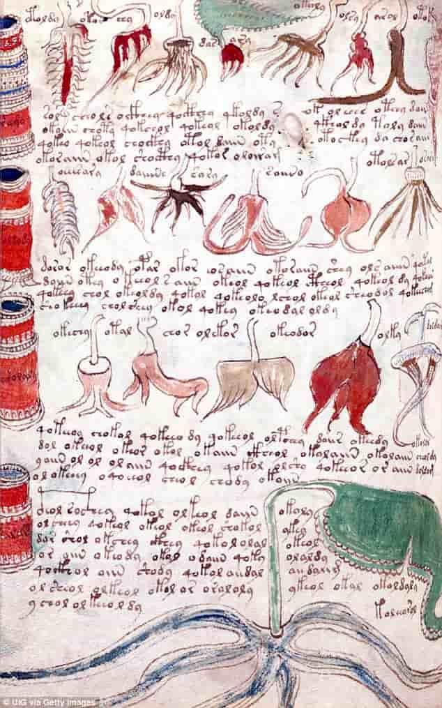 Χειρόγραφο του Voynich