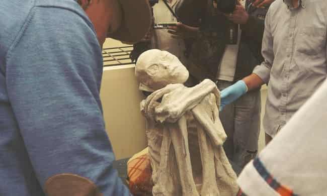 Απίστευτη Εξέλιξη: Οι Εξωγήινοι που Βρέθηκαν στον Τάφο της Νάζκα ήταν Ζωντανοί (video)