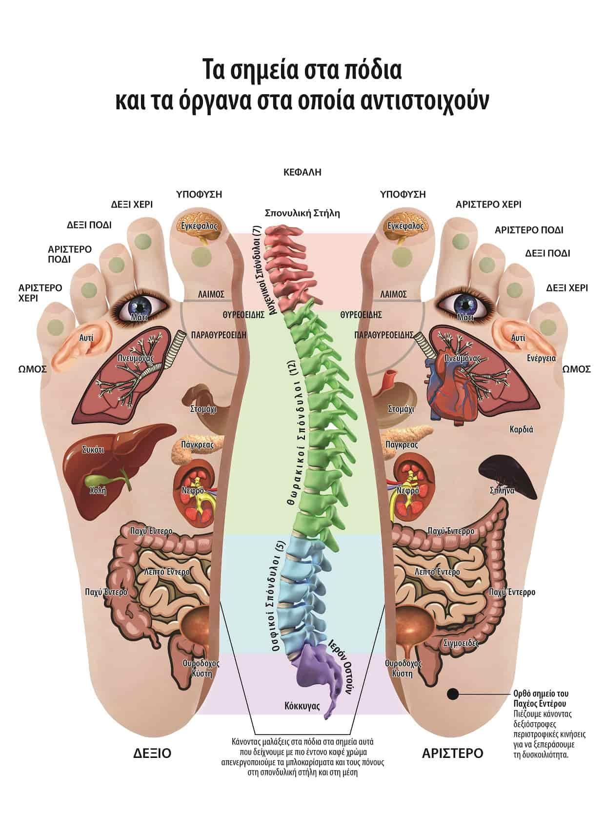 Απαλλαγείτε από προβλήματα σε σπονδυλική στήλη, σκολίωση, καμπούρα, πόνους και κήλες στη μέση