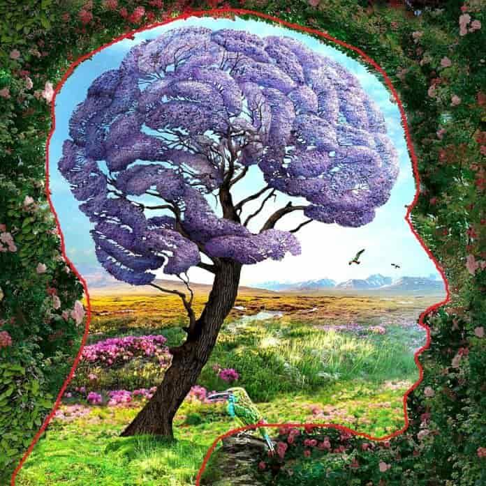 Αυτό που Βλέπεις Πρώτο Αποκαλύπτει Όσα Κρύβονται στο Ασυνείδητό σου