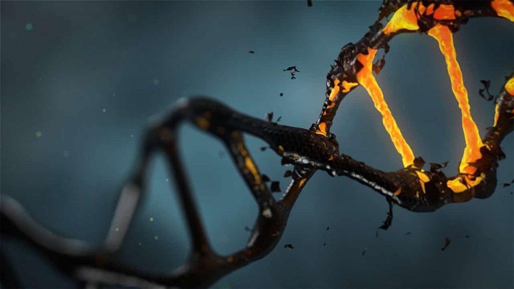 Δεν Φαντάζεστε σε Ποιόν Ανήκει το Αρχαιότερο DNA που Ανακαλύφθηκε Ποτέ