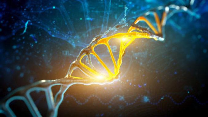 """Στο Χάρβαρντ Ανακάλυψαν τον Διακόπτη DNA που Μπορεί να """"Γεννήσει"""" Χαμένα Μέλη του Σώματος"""