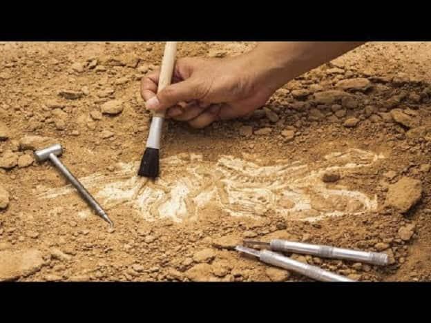 Ανακάλυψαν Αρχαίο Εργαλείο για Τατουάζ 2.000 Ετών (video)