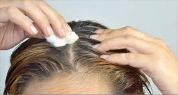 Οι Άσπρες Τρίχες στα Μαλλιά Γίνονται Μαύρες Ξανά με Πάστα από Φύλλα Τζιτζιφιάς! 2 Θεραπείες