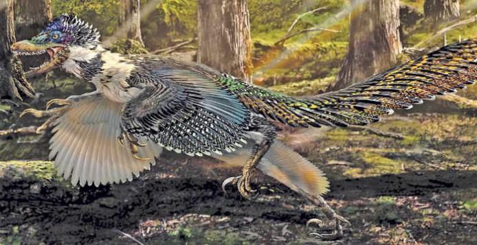 Οι Δεινόσαυροι Δεν Εξαφανίστηκαν Ποτέ Ολοκληρωτικά από τη Γη