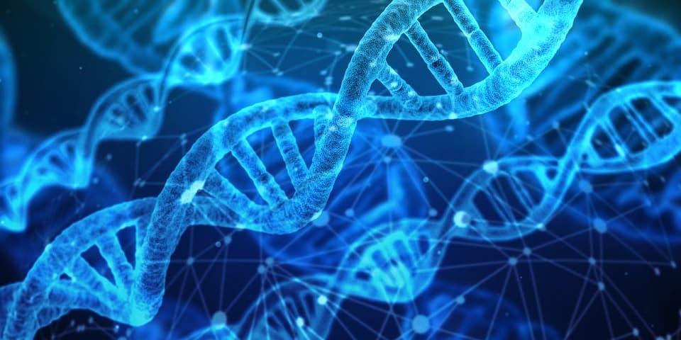 Το DNA μας Είναι ένας Κώδικας. Αλλά Ποιος τον Δημιούργησε;