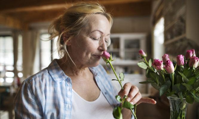 Γιατί να Βάζετε Φρέσκα Λουλούδια στο Σπίτι ή στο Γραφείο Καθημερινά