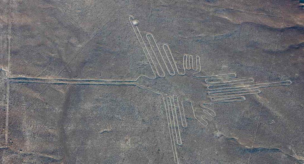 «Γραμμές της Νάζκα»: Βαθαίνει το Μυστήριο καθώς τα Γεωγλυφικά Δείχνουν Άγνωστα Πουλιά στο Περού! Πού τα Έμαθαν;