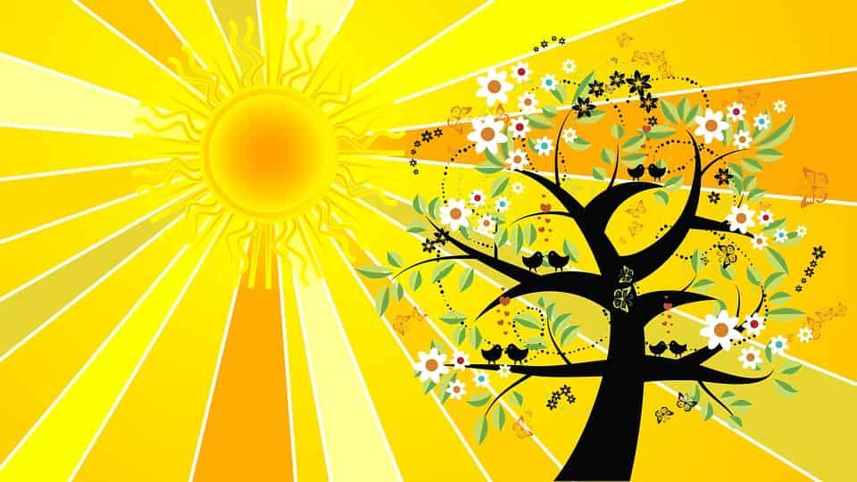 Δημιουργείστε Προστατευτικό Φυλαχτό με την Ενέργεια του Θερινού Ηλιοστασίου