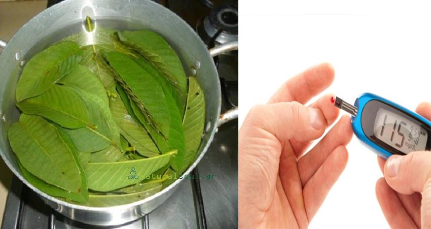 Βράστε Φύλλα από Μάνγκο για την Καταπολέμηση του Διαβήτη!