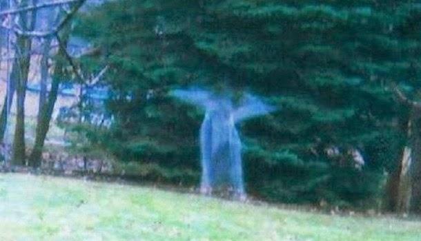 Μυστηριώδης Φιγούρα Αγγέλου καταγράφηκε σε ένα δάσος στο Μίτσιγκαν της Αμερικής
