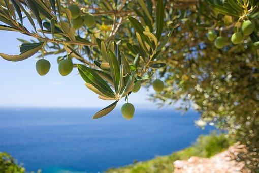 10 λέξεις από την Κρήτη που δύσκολα καταλαβαίνουν στην υπόλοιπη Ελλάδα