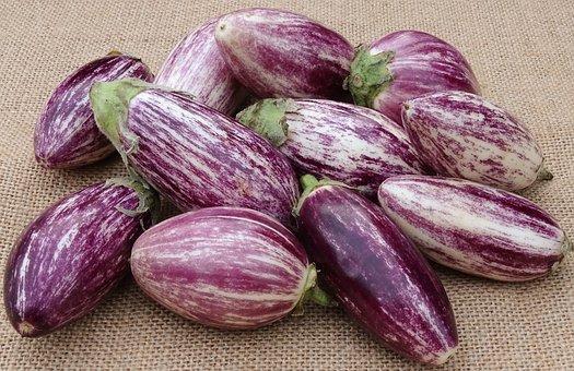 Μελιτζάνα: Αντικαρκινικό λαχανικό, ρίχνει τη χοληστερόλη, προστατεύει από την άνοια
