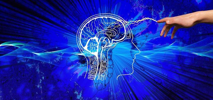 Μύθος ότι χρησιμοποιούμε μόνο το 10% του εγκεφάλου μας. Είναι πολύ παραπάνω